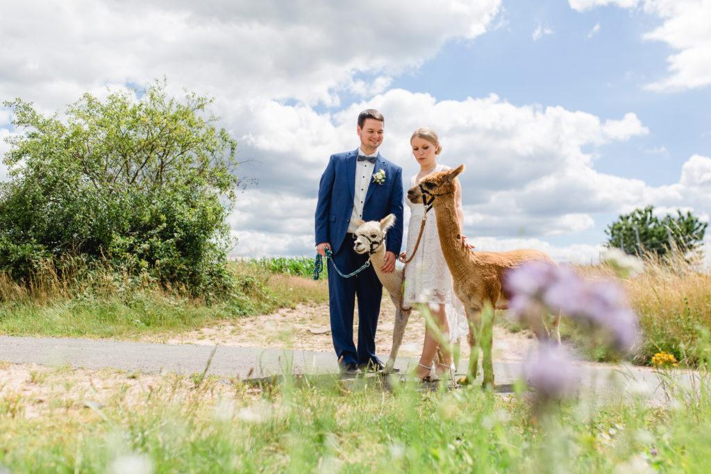 Ramona & Christian Hochzeitsbilder mit Alpakas in Aschaffenburg Miltenberg